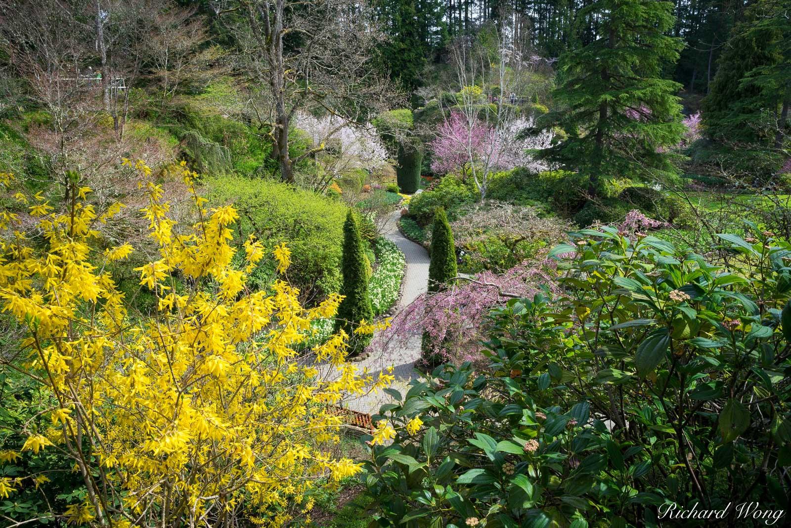 Sunken Garden - The Butchart Gardens, Vancouver Island, B.C, Canada