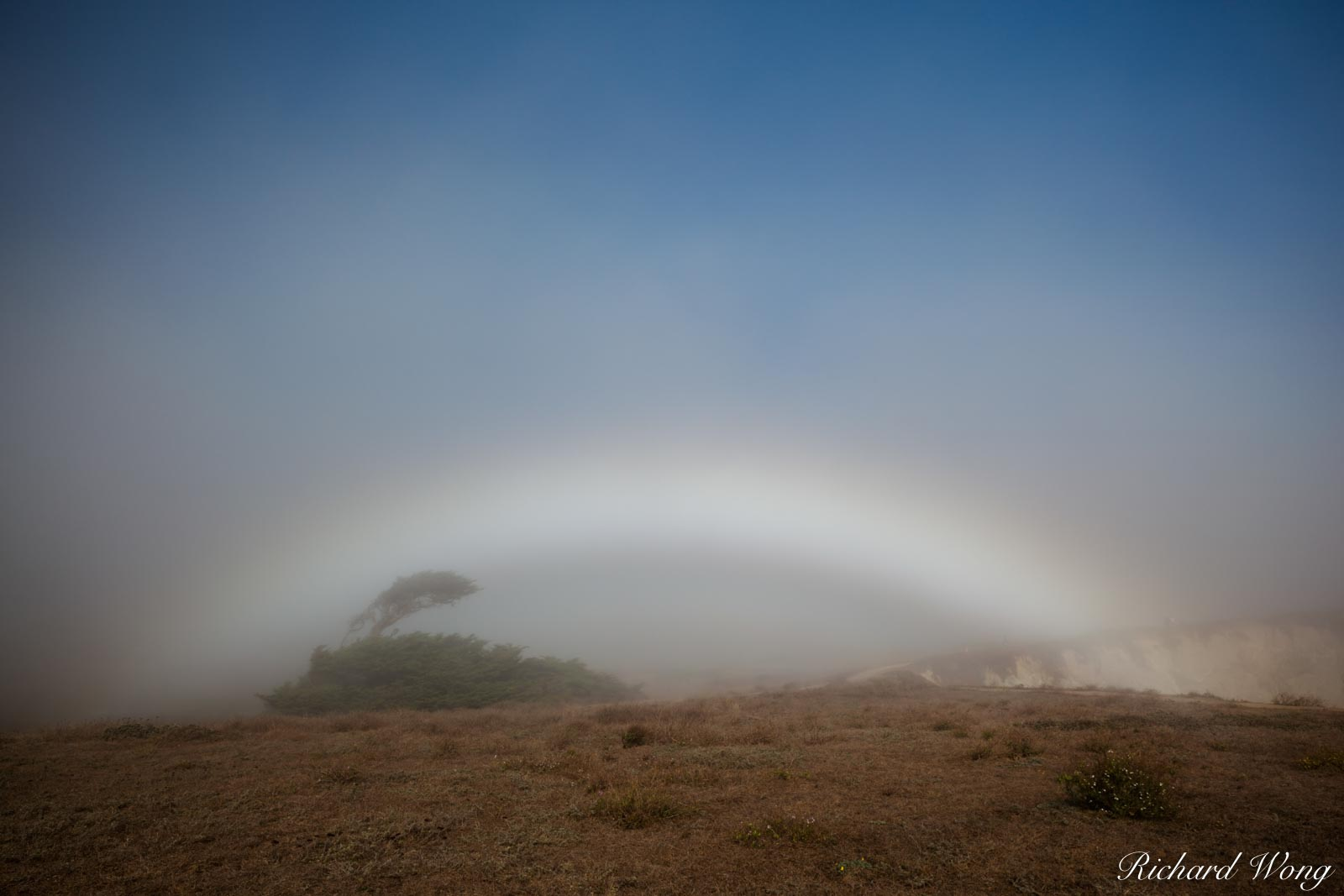 Fogbow at Bodega Head, Sonoma Coast, California, photo, photo