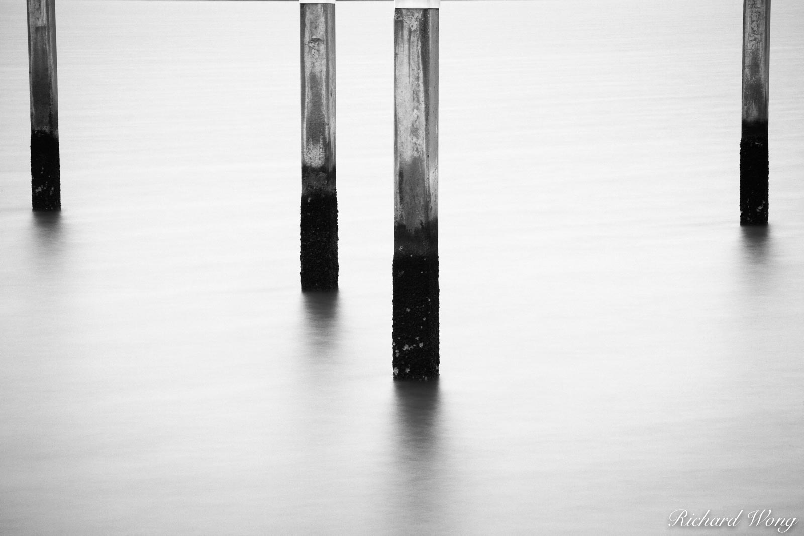 Abandoned Dock Pilings, Alameda, California, alameda point, photo, photo