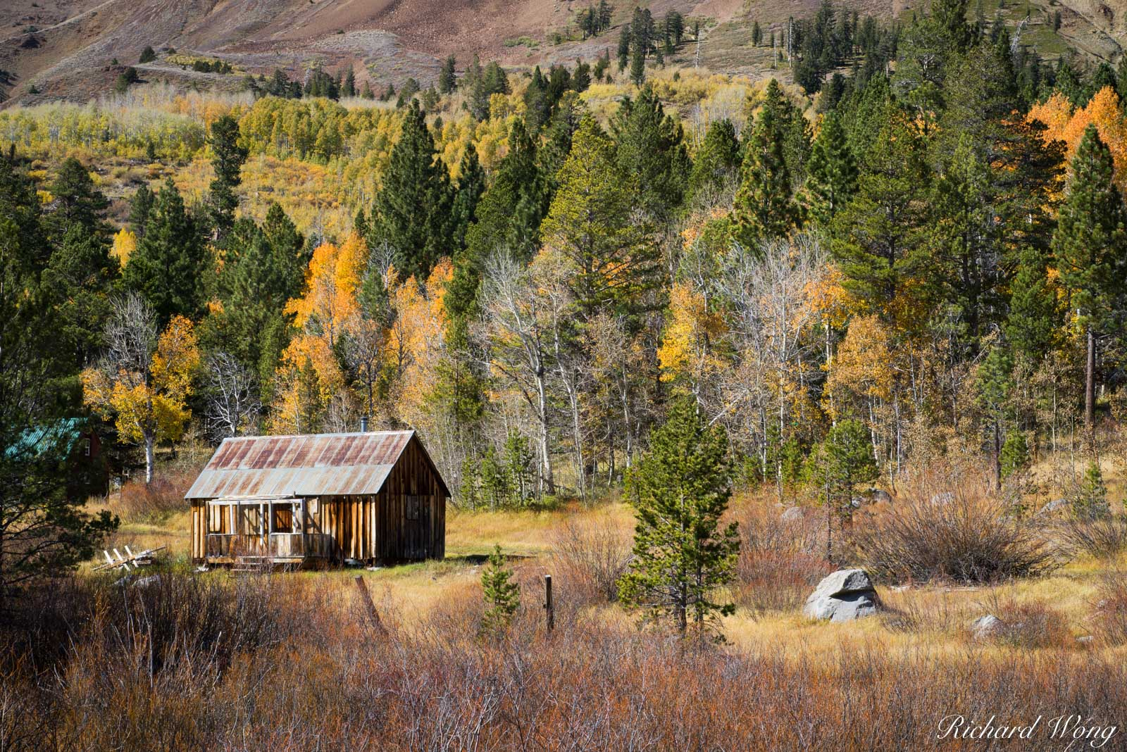 Cabin and Fall Color, Hope Valley, California, photo, photo