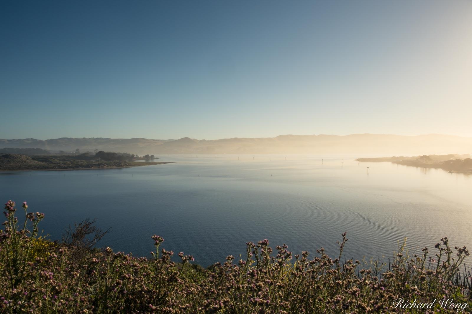 Bodega Harbor, Bodega Bay, California, photo