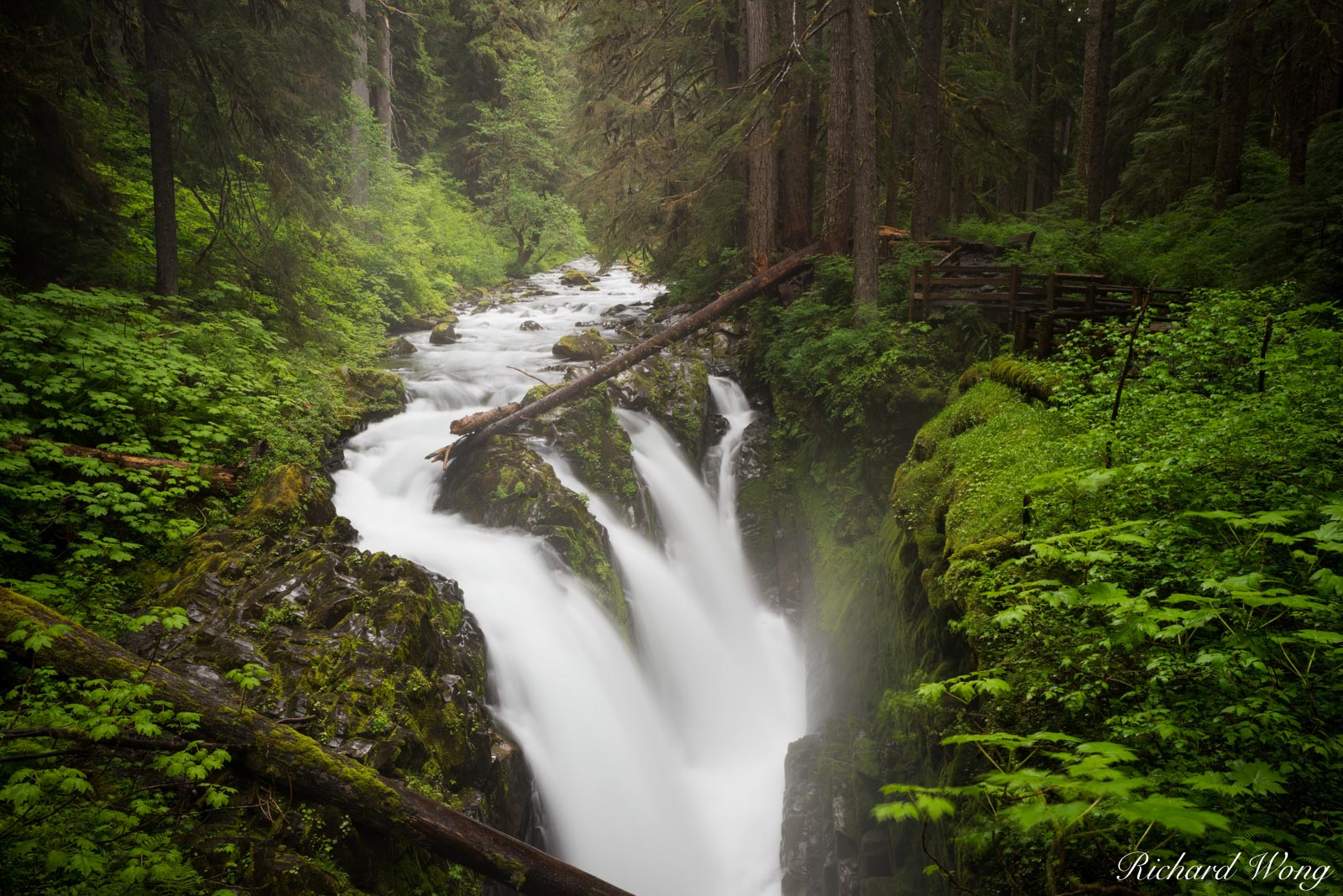 Sol Duc Falls, Olympic National Park, Washington, photo, photo