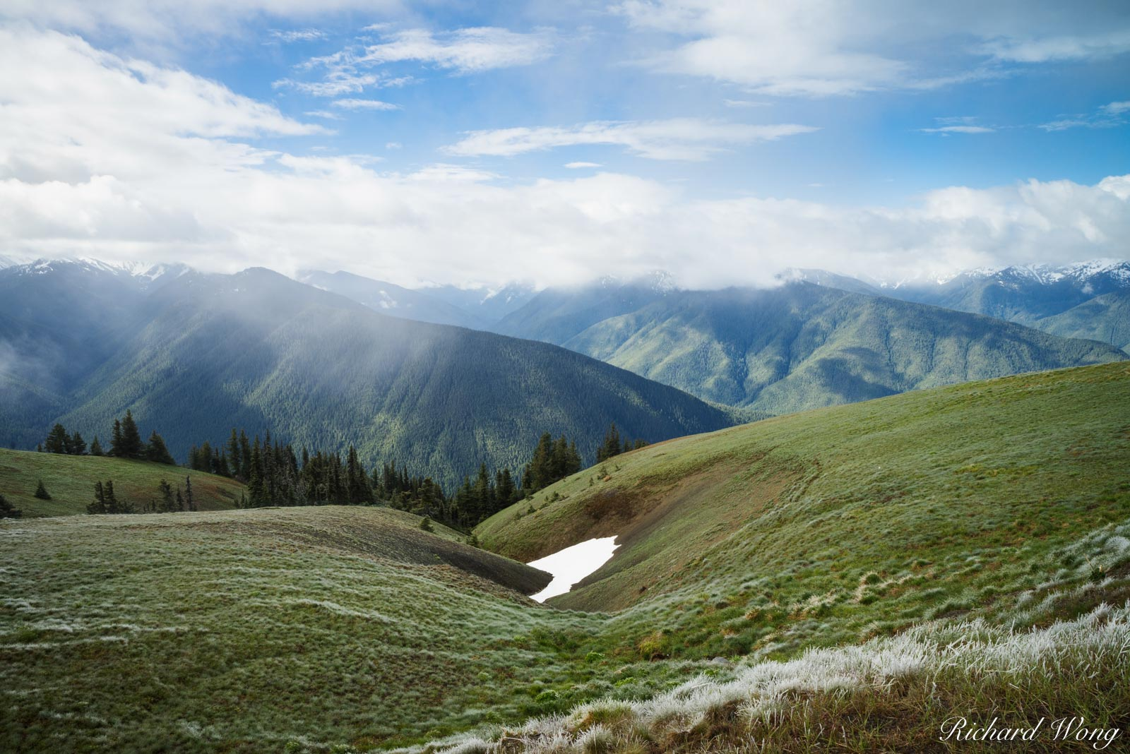 Hurricane Ridge, Olympic National Park, Washington, photo, photo