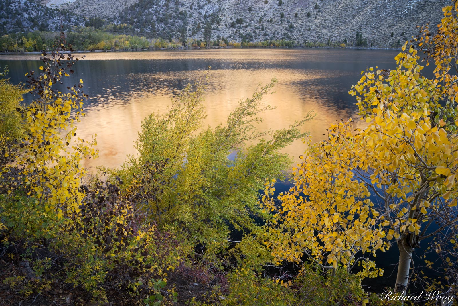 Convict Lake Fall Colors, Inyo National Forest, California, photo, photo