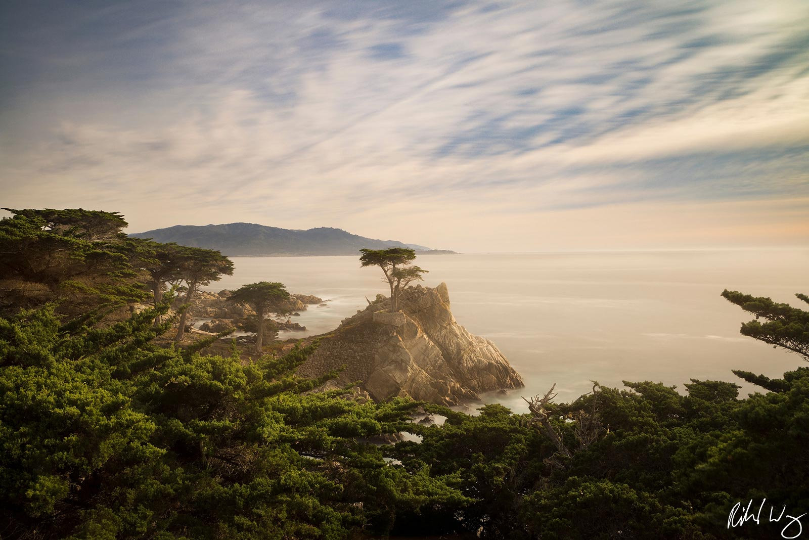 the lone cypress tree, 17 mile drive, pebble beach, california, photo, photo