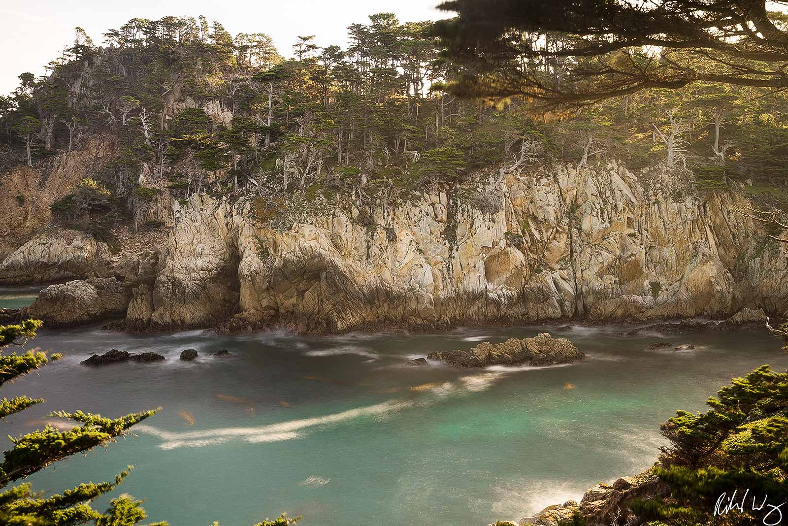 Allan Memorial Grove Scenic Overlook, Point Lobos State Natural Reserve, California, Photo, photo