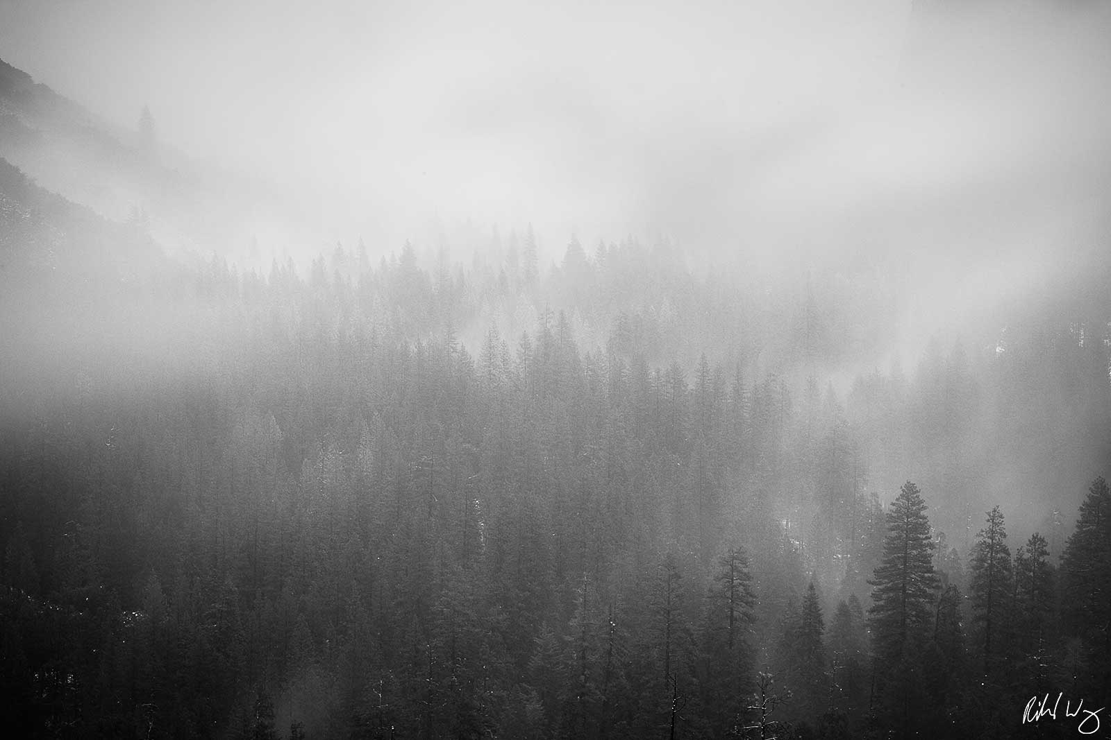 Black and White Photo: Snow Storm at Tunnel View, Yosemite National Park, California