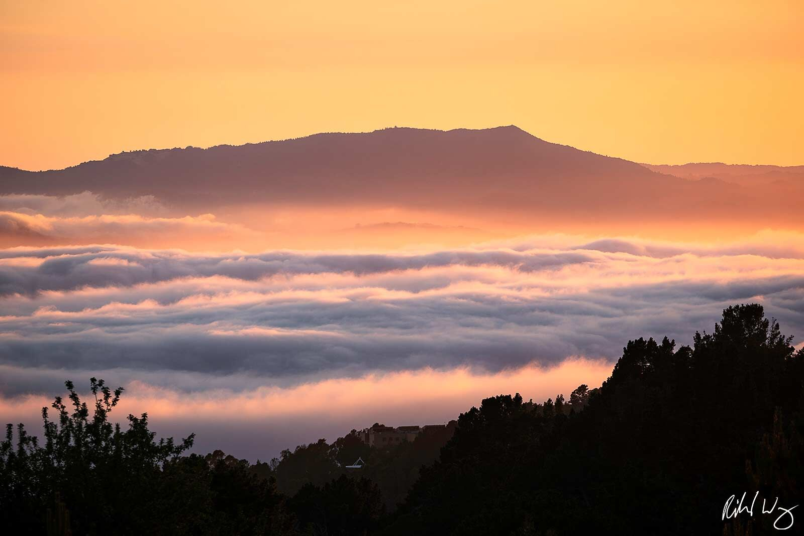 Layer of Fog at Sunset With Mount Tamalpais in Background, Berkeley, California