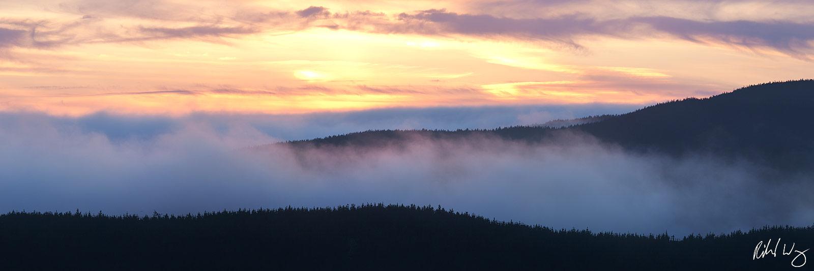 Summer Fog Rolling in Over Ridge at Sunset, Point Reyes National Seashore, California