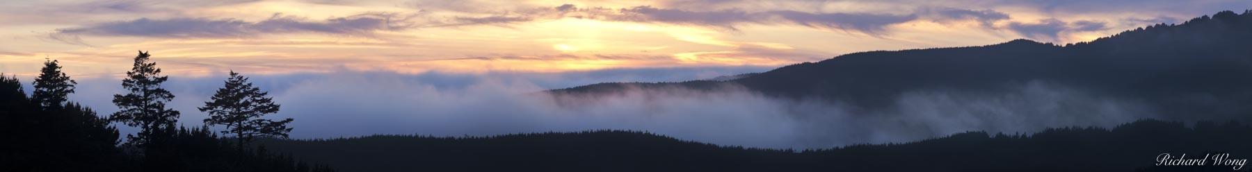 Summer Fog Rolling in Over Ridge at Sunset, Point Reyes National Seashore, California, photo, photo