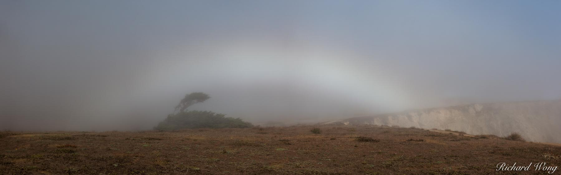 Fogbow Panoramic at Bodega Head, Sonoma Coast, California, photo, photo