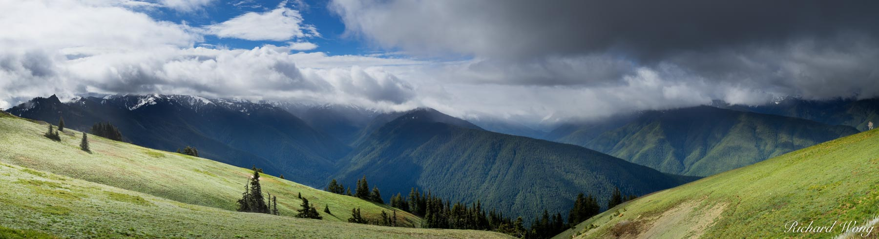 Hurricane Ridge Panoramic, Olympic National Park, Washington, photo, photo