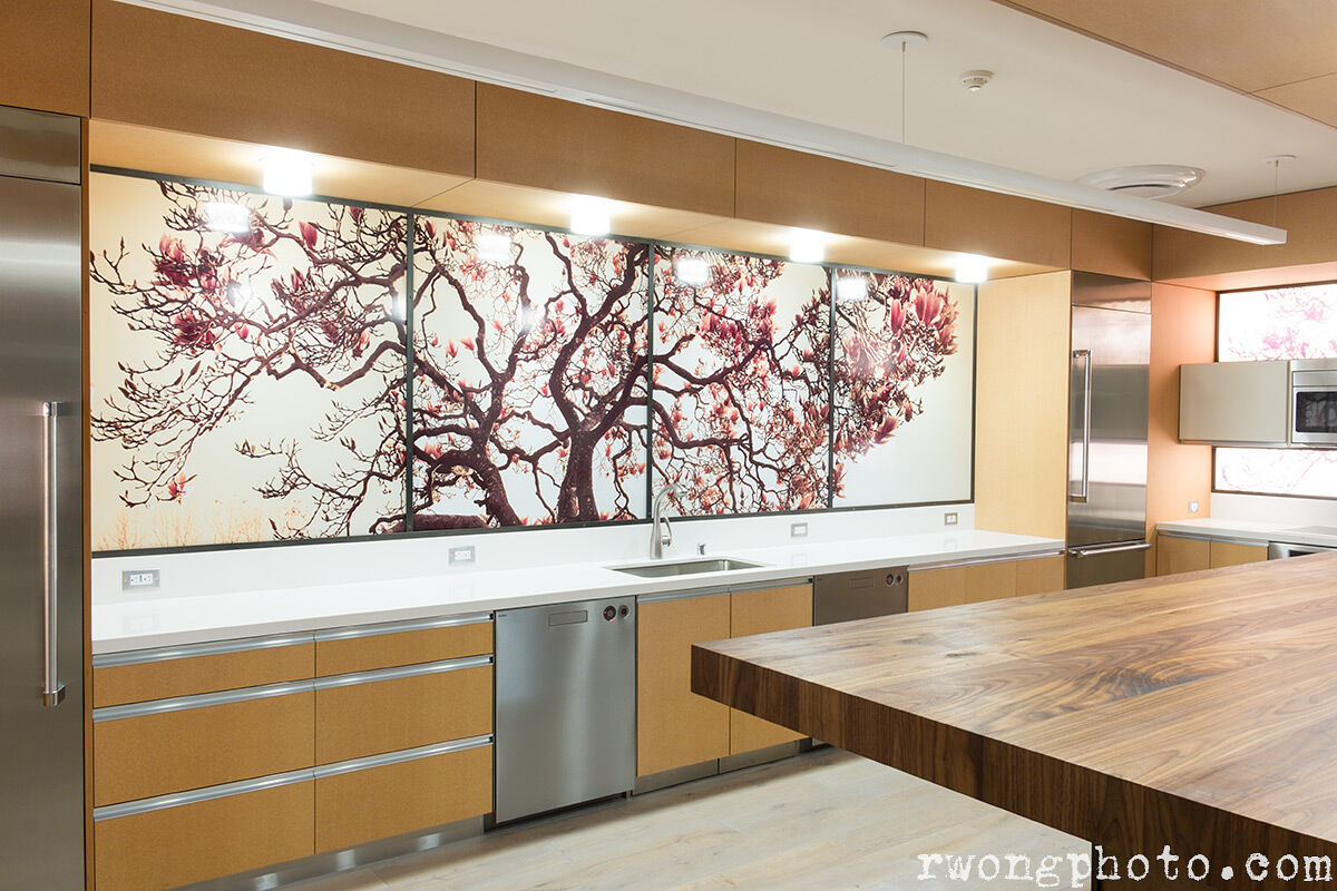 Large Panoramic Photo in Designer Kitchen, Berkeley, California
