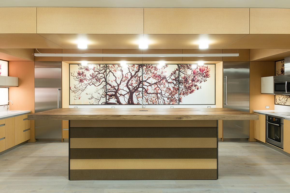 Large Panoramic Photo on Backlit Acrylic Panel in Kitchen, Berkeley, California